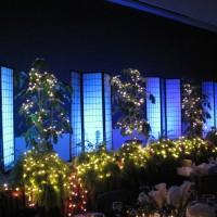 SIU Ballroom IMG_1629