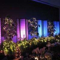 SIU Ballroom IMG_1630